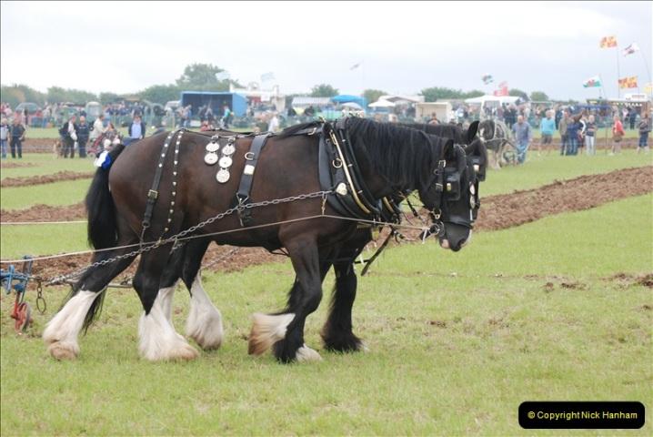GDSF 2008. Picture  (214) 214
