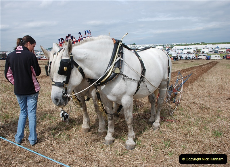 GDSF 2011. Picture  (494) 0494