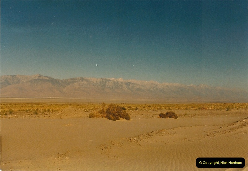 1982-08-15 Death Valley National Monument, California.  (10)171