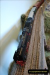 Some of your Host's model locomotives running on a friends railway.  (41)41