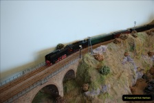 Some of your Host's model locomotives running on a friends railway.  (53)53