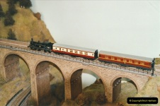 Some of your Host's model locomotives running on a friends railway.  (63)63