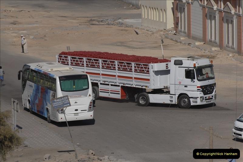 2011-11-14 Safaga, Egypt.  (8)