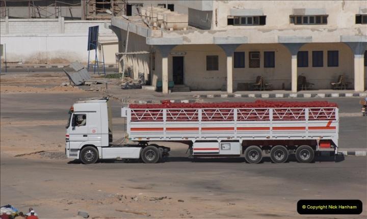 2011-11-14 Safaga, Egypt.  (12)
