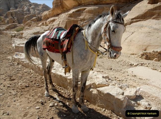 2011-11-12 Aqaba & Petra, Jordan.  (114)