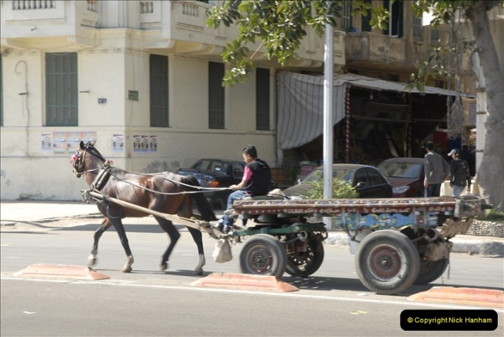 2011-11-07 to 08 Alexandria, Egypt.  (161)