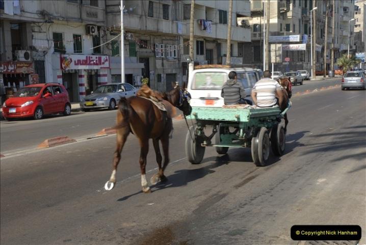 2011-11-07 to 08 Alexandria, Egypt.  (173)