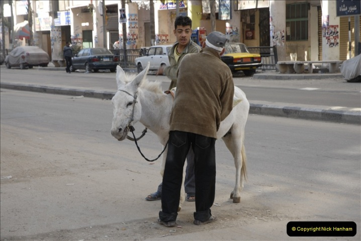 2011-11-07 to 08 Alexandria, Egypt.  (186)