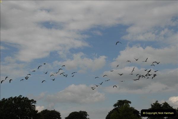 2012-08-19 The Vyne Nr. Basingstoke, Hampshire.  (10)