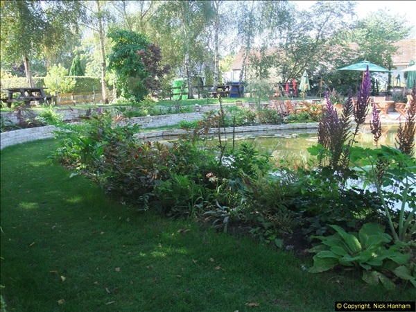 2013-09-05 Holme Garden Centre, Nr. Wareham, Dorset. (2)