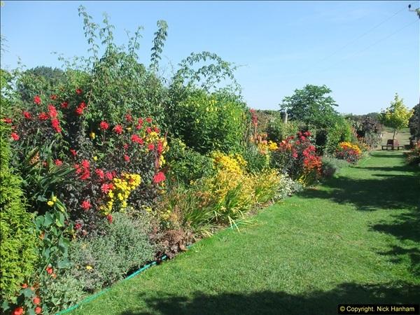 2013-09-05 Holme Garden Centre, Nr. Wareham, Dorset. (4)