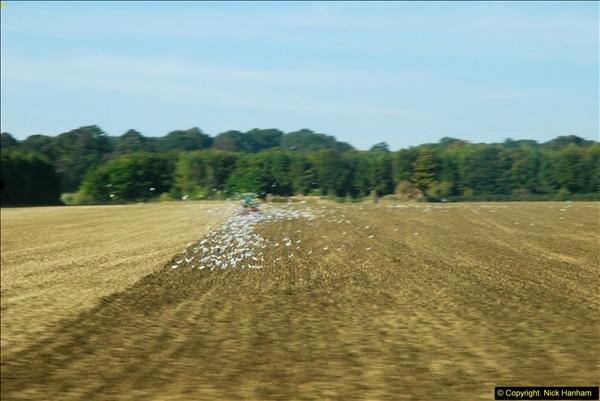 2013-09-30 Near Sywell, Northamptonshire.  (2)255