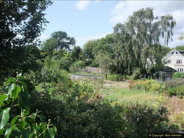 2014-08-23 Million £ Allotment in Blake Dene Road. .   (4)165