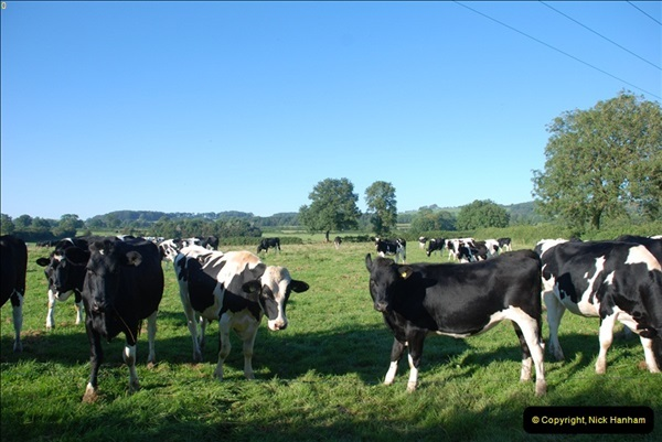 2012-09-07 S&DJR Maesbury, Somerset.  (2)281