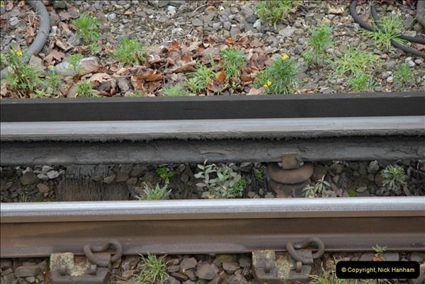 2012-11-22 Branksome Station, Poole, Dorset.  (26)063