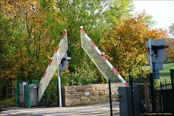 2013-11-13 Sherborne, Dorset.  (20)197