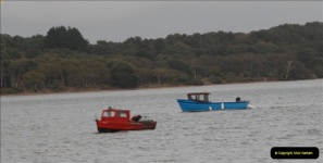 2012-10-18 Visit to Brownsea Island, Poole Harbour, Dorset.  (118)118