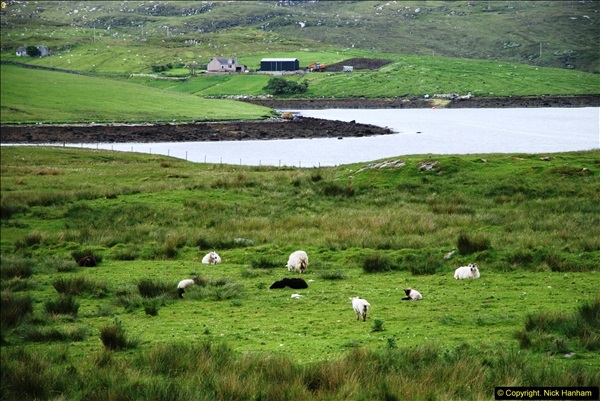 2014-06-10 Lewis - Harris & Faroe Islands. (144)172