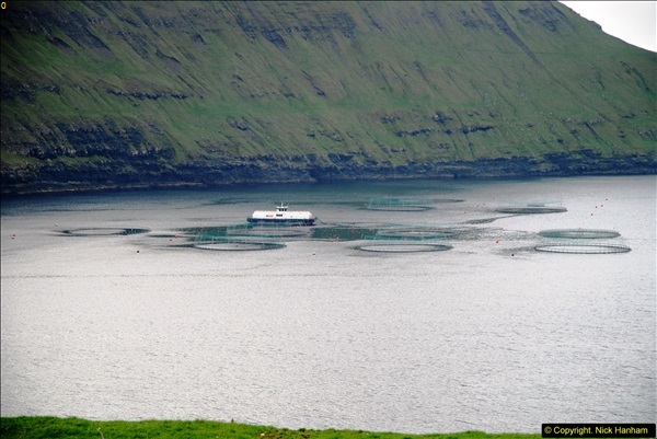 2014-06-11 Lewis - Harris & Faroe Islands. (140)406