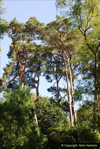 2016-07-20 A continuation of the Poole country to seaside and return walk. (67a) (22)121