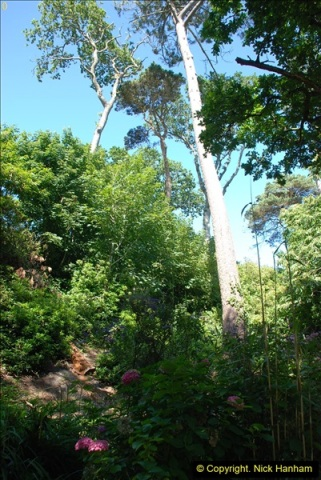 2016-07-20 A continuation of the Poole country to seaside and return walk. (67a) (42)141
