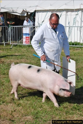 2017-09-02 The Dorset County Show 2017.  (155)155