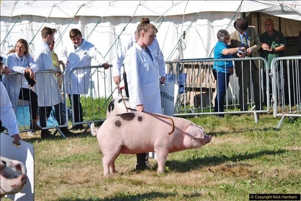 2017-09-02 The Dorset County Show 2017.  (156)156