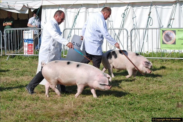 2017-09-02 The Dorset County Show 2017.  (157)157