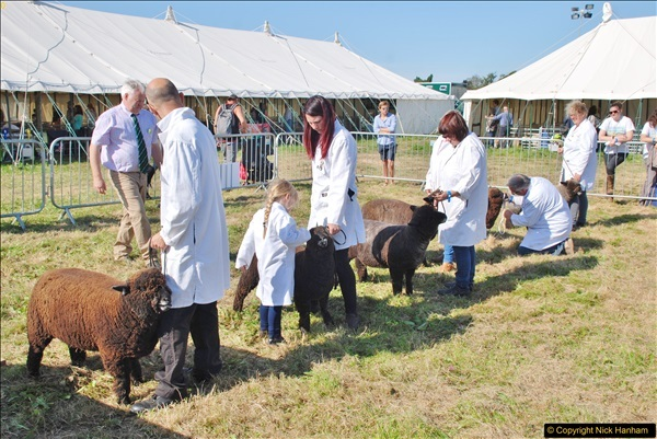 2017-09-02 The Dorset County Show 2017.  (173)173
