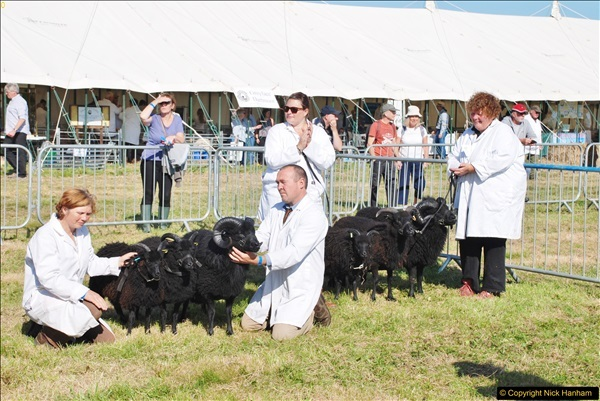 2017-09-02 The Dorset County Show 2017.  (174)174
