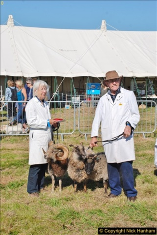 2017-09-02 The Dorset County Show 2017.  (175)175