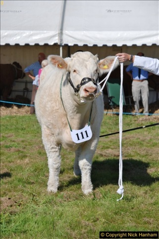 2017-09-02 The Dorset County Show 2017.  (183)183