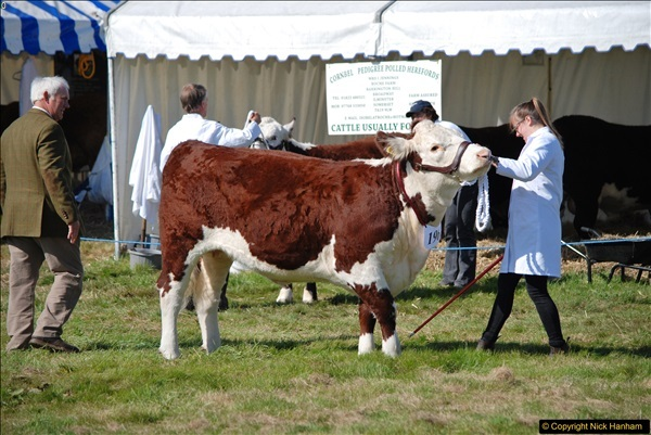 2017-09-02 The Dorset County Show 2017.  (185)185