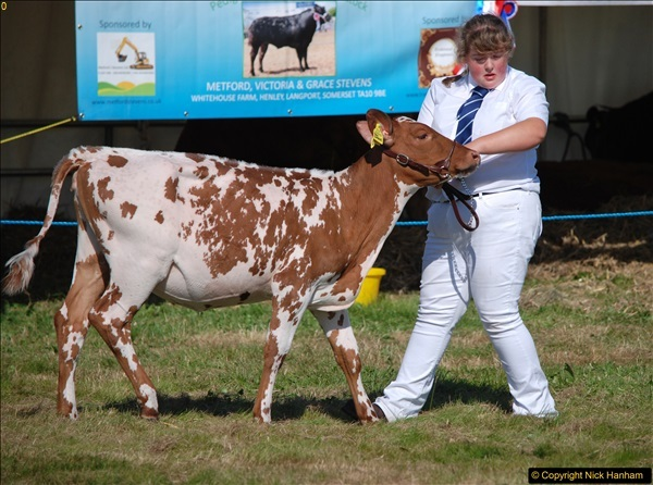 2017-09-02 The Dorset County Show 2017.  (187)187
