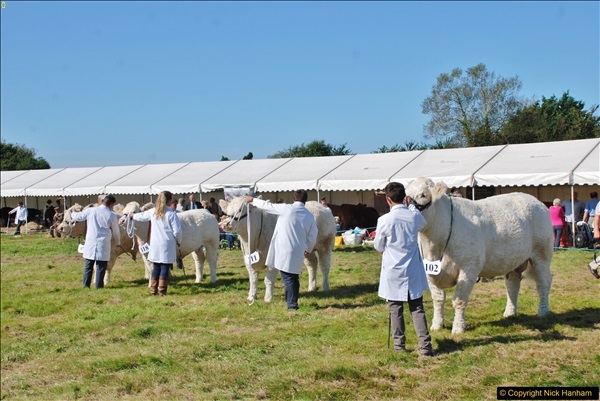 2017-09-02 The Dorset County Show 2017.  (190)190