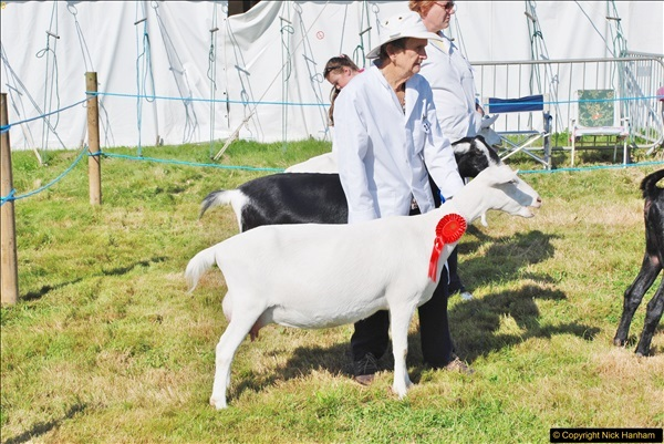 2017-09-02 The Dorset County Show 2017.  (197)197