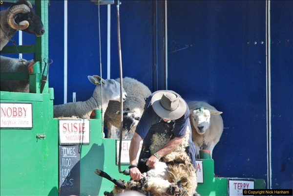 2017-09-02 The Dorset County Show 2017.  (301)301