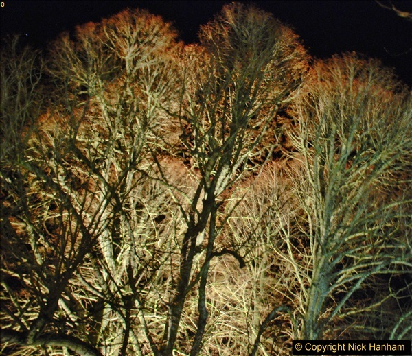 2017-12-15 Kingston Lacy by Night. (40)040