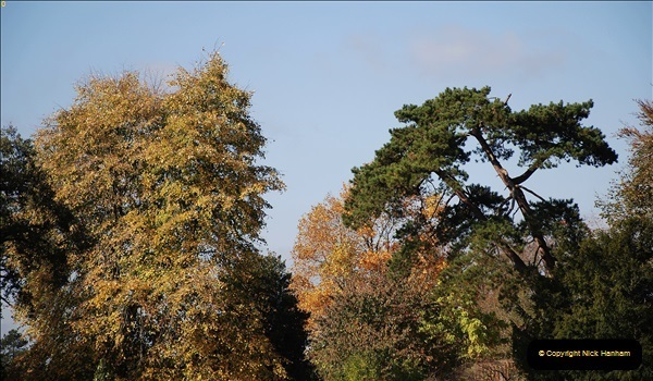 2018-10-21 Dyrham Park (NT) Autumn Colour. Near Bath, Somerset.  (28)028