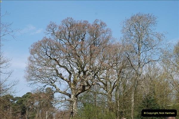 2013-04-25 Beaulieu, Hampshire.  (2)019