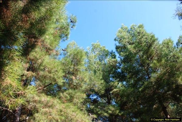 2013-10-27 Canakkale, Turkey.195