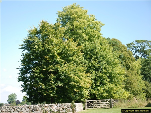 2014-07-22 Avebury, Wiltshire.  (2)235