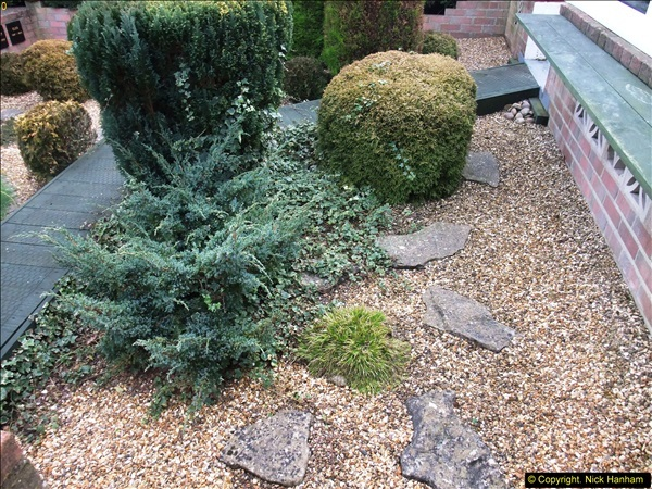 2015-03-08 Back & Front garden before changes.  (7)064