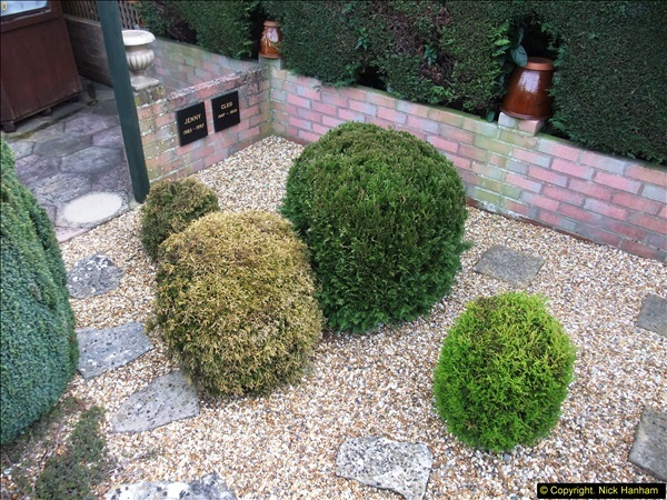 2015-03-08 Back & Front garden before changes.  (9)066