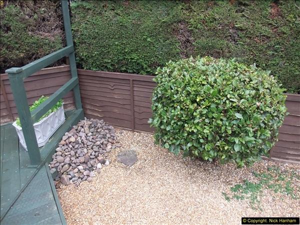 2015-03-28 Front & Back Garden plus Kitchen Refurbishment final pictures.  (34)284