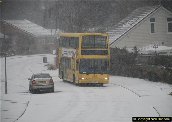 2018-03-01 D1 Parkstone, Poole, Dorset (9)166