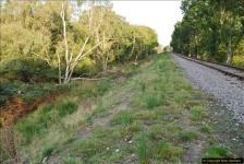 Bridge 13 to Bridge 11.  (95)095