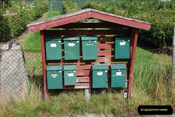Norway. Skjolden. August. 2010 (2)157