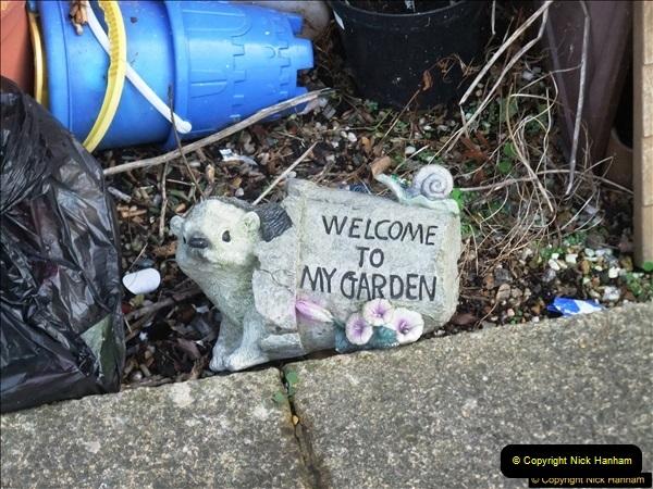 2016-11-10 Alton, Hants. BIG garden! (1)18