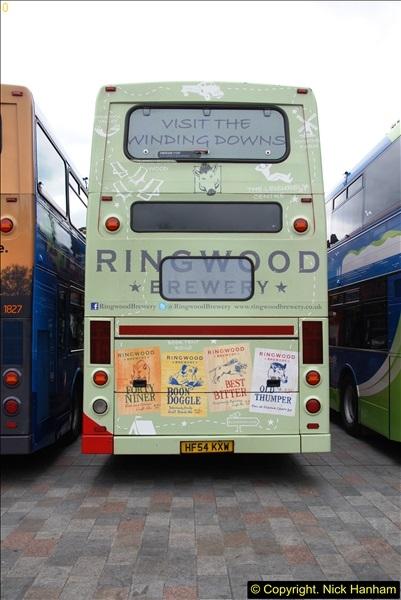 2015-06-14 W&D 100 @ Salisbury, Wiltshire. (198)198